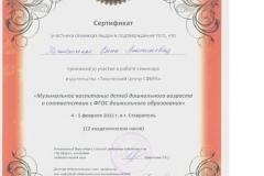 Сертификат семинар Радыновой